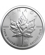 2019 Canadian Maple Leaf Silver Monster Box (SEALED)