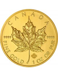 Canadian Maple Leaf Gold Coin (Any Year) *Tube of 10*