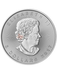 2017 Canadian Silver Maple Leaf Coin