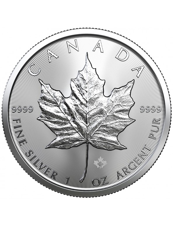 Buy 2019 Canadian Silver Maple Leaf Coin *Tube of 25*