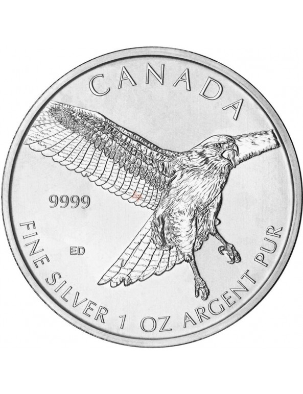 Buy Birds of Prey Series - Silver Red-Tailed Hawk