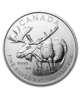 Canadian Wildlife Series - Silver Moose